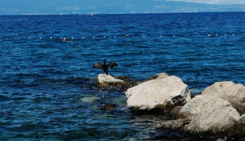 Kroatien Corona Tourismus
